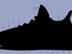 下半年就是要抢光你荷包?!adidas Yeezy Boost 350 V2 即将推四款全新配色,让人人绝对都有 Yeezy 穿!
