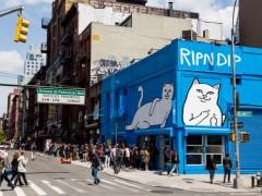 中指猫出没 ! 一窥 RIPNDIP 纽约 Pop-Up 限定店铺样貌